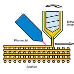 Schema zur Herstellung beschichteter Scaffolds: Unmittelbar nach der Extrusion werden die Gerüststrukturen mit einem kalten Plasma behandelt