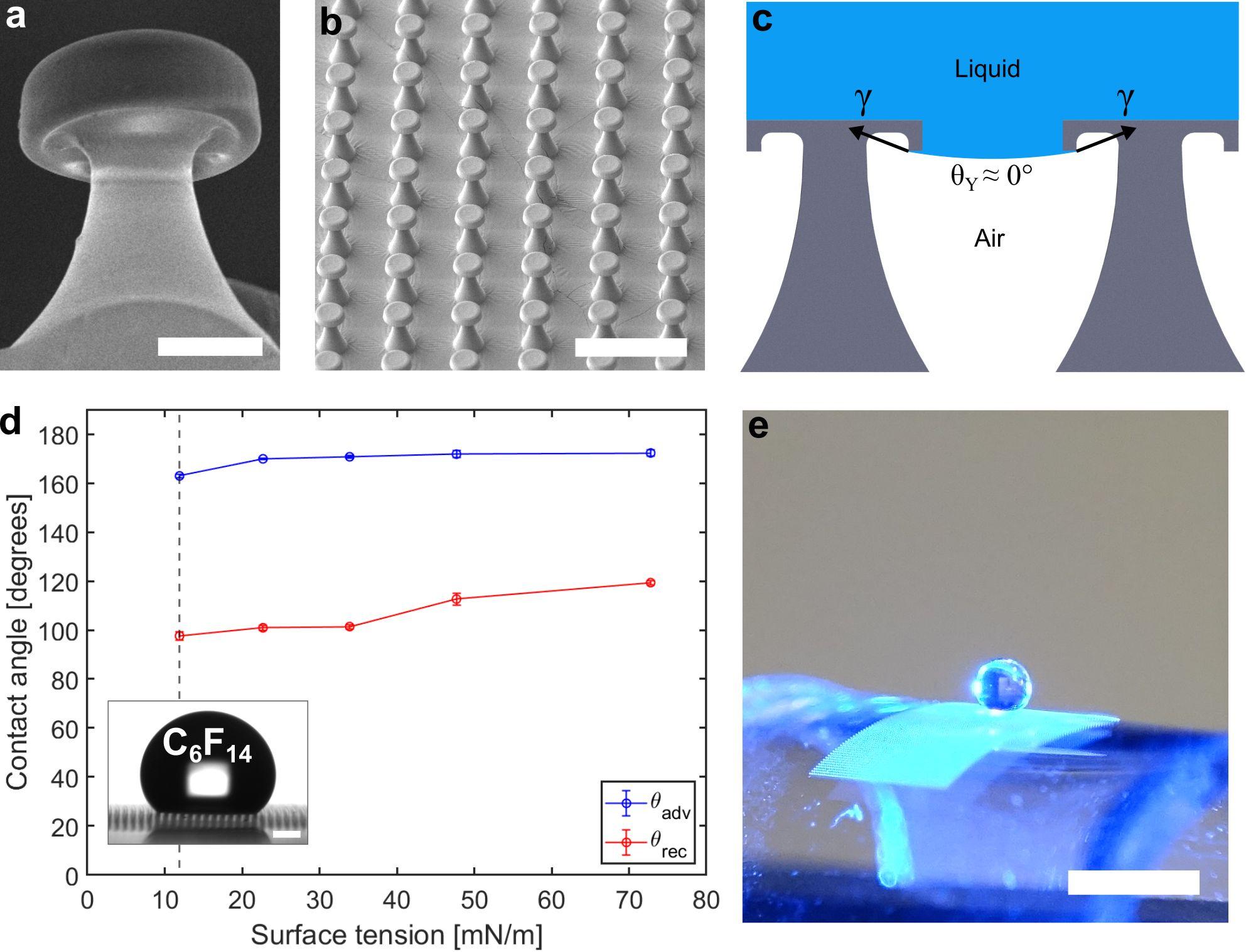Bioinspirierte flüssigkeitsabweisende Oberfläche